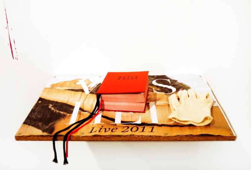 Natascha Stellmach, Installation view, Media Whore, 2010, hand-bound artist book, 440 pages, digital printing on paper, ribbon, faux leather, 16 x 13 x 6 cm on shelf made from band posters