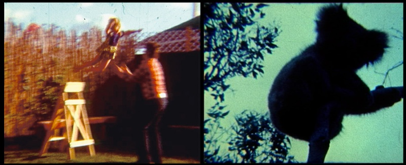 © Natascha Stellmach, Oi Oi Oi, 2007, stills from super8 film transferred to video, 1-channel, sound, 3:30min