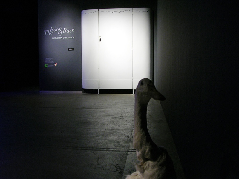 © Natascha Stellmach, Installation view (entrance): The Book of Back, mixed media, ACP Sydney, 2007
