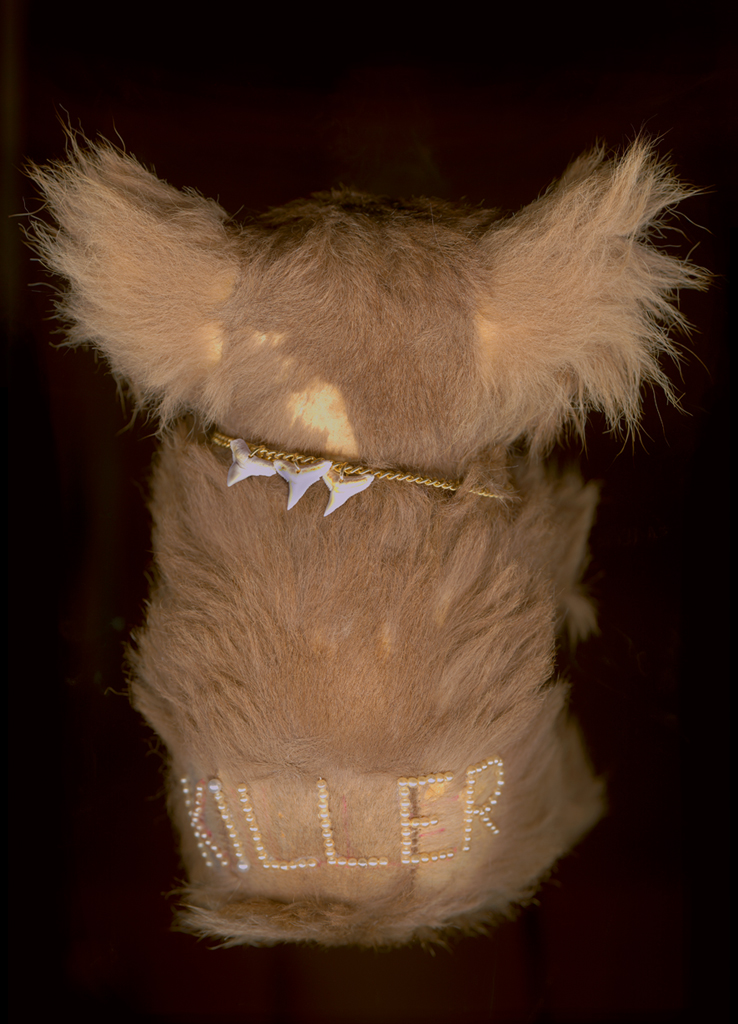 Killer (from the series Worry Dolls), archival ink on photo rag, 60 x 44cm, 2010