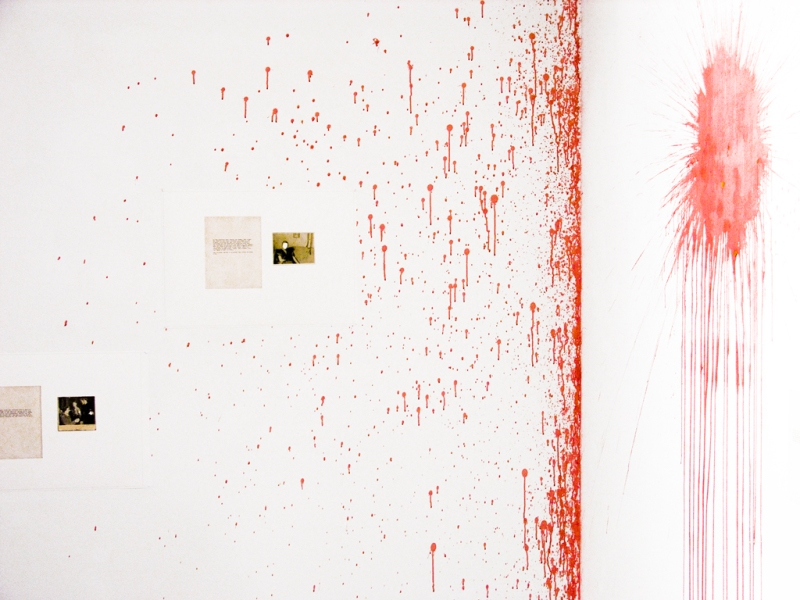 Natascha Stellmach, Installation view (detail), Blood, Fotogalerie Wien, Vienna, 2010
